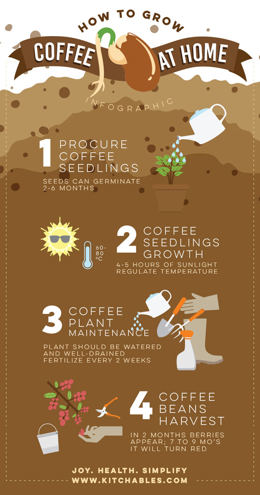HowtoGrowCoffee_Info